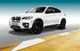 BMW X5 E70 X6 E71 Performance Styling Mat Zwarte Grill Nieren_