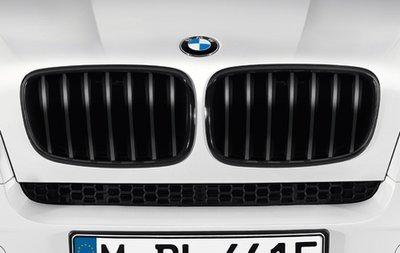 BMW X5 E70 X6 E71 Performance Styling Mat Zwarte Grill Nieren